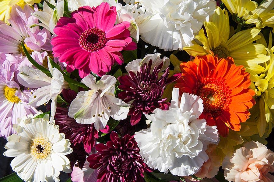 Bouquet Close-Up
