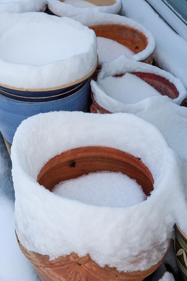 Snow Rims